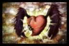 My_Bruised_Heart_by_murtada_king (1)