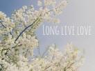 Long-Live-Love